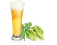 Mexicans have increased their taste for consuming light beer over dark beer,