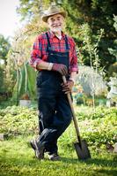 Jardinagem (Serviço pontual ou manutenção mensal)